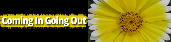 Coming in going out Daily Scripture – September 29th – Coming In; Going Out