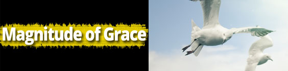Grace Daily Scripture – July 17th – The Magnitude of Grace