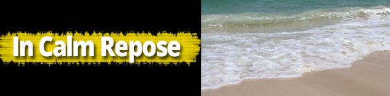 InCalmResponse Daily Scripture – August 22nd– In Calm Repose